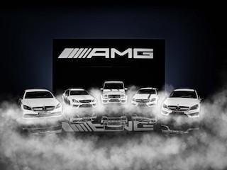 2014-AMG.jpg