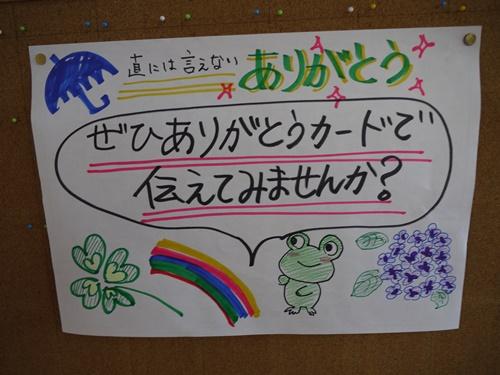 2015-05-20 15.20.48.jpg